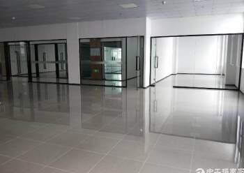 龙华汽车站对面300平方,精装修图片6