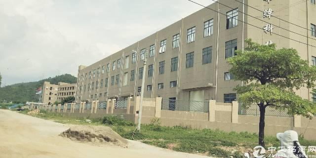 黄江镇原房东三层独院