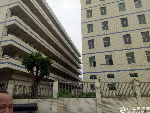深圳龙岗零距离独院厂房17500平招租