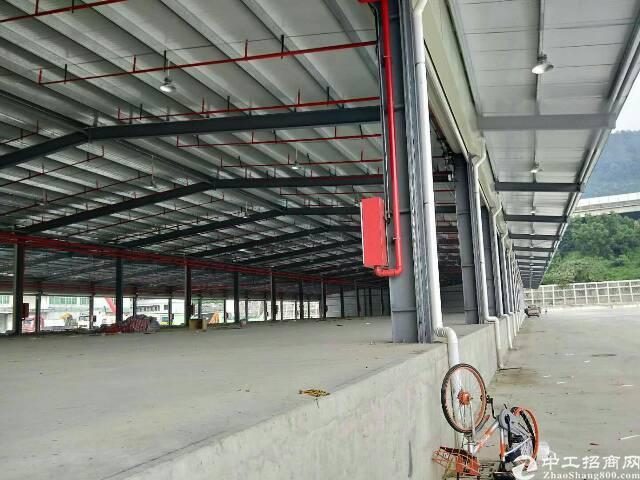 原房东红本独院9米高物流厂房12600平