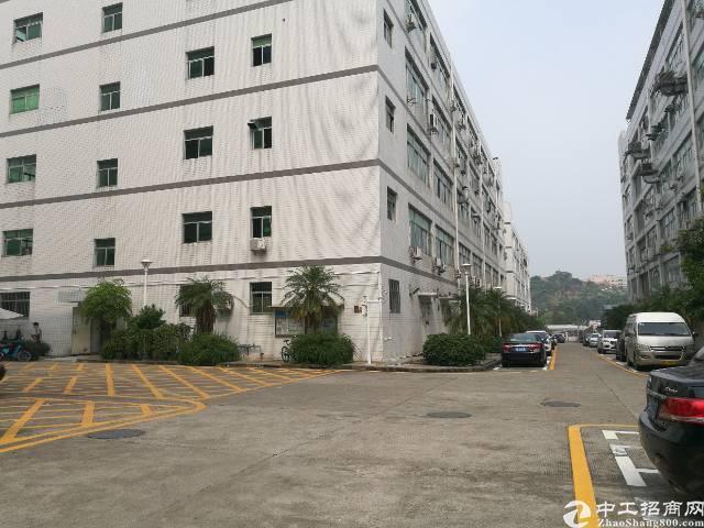 西乡桃源居附近恒丰工业城楼上1200平米出租