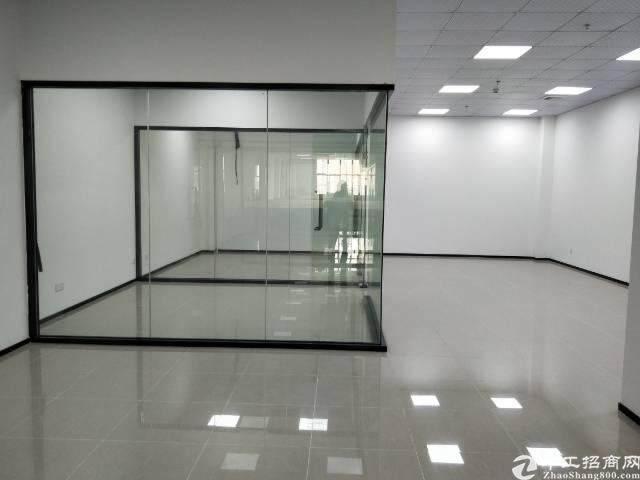 龙华汽车站对面3楼165平方,精装修图片4