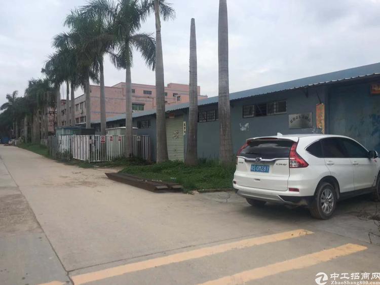 龙华清湖附近新出一楼钢构仓库1500平