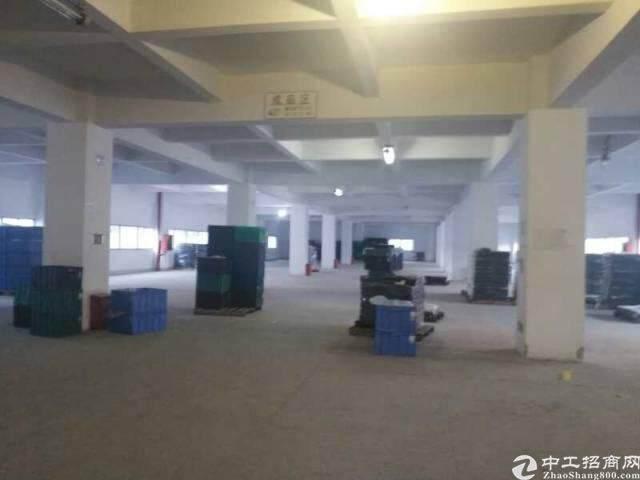 南山西丽留仙科创中心精装写字楼65元/㎡图片5