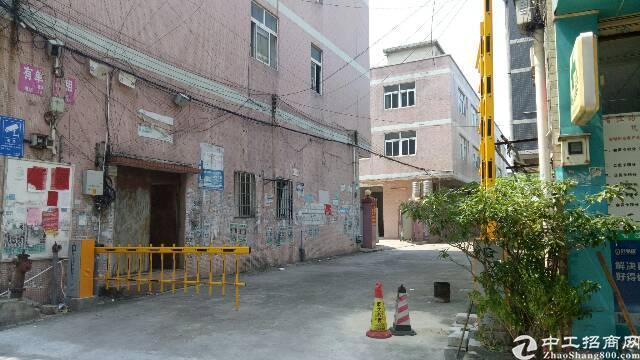 广州市新塘镇新出原房东独门独院带装修厂房出租了
