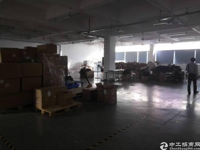 龙华龙胜一楼6米高1450平仓库出租