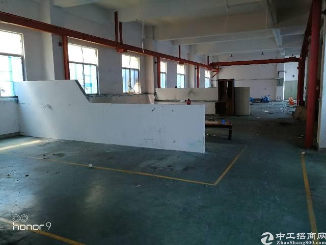 福永塘尾宝安大道边一楼600平方带装修