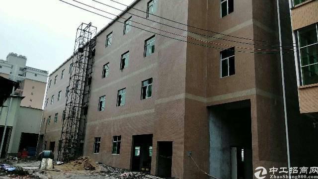 惠州小金口工业区内独院3600平标准厂房出租!