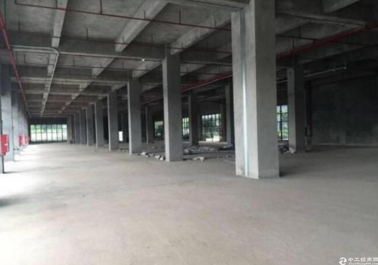 龙华红本厂房1楼2000平,五和大道旁新出科学院-图6