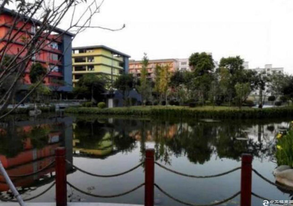 龙华红本厂房1楼2000平,五和大道旁新出科学院-图4
