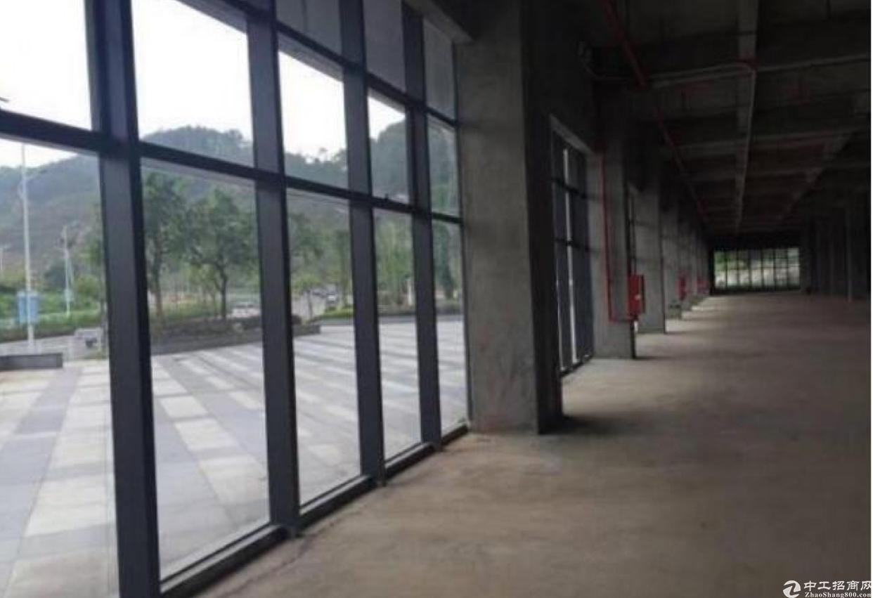 龙华红本厂房1楼2000平,五和大道旁新出科学院-图3