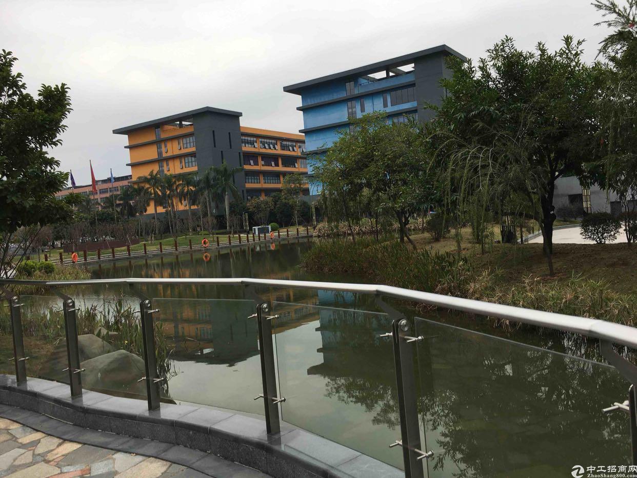 龙华红本厂房1楼2000平,五和大道旁新出科学院-图2