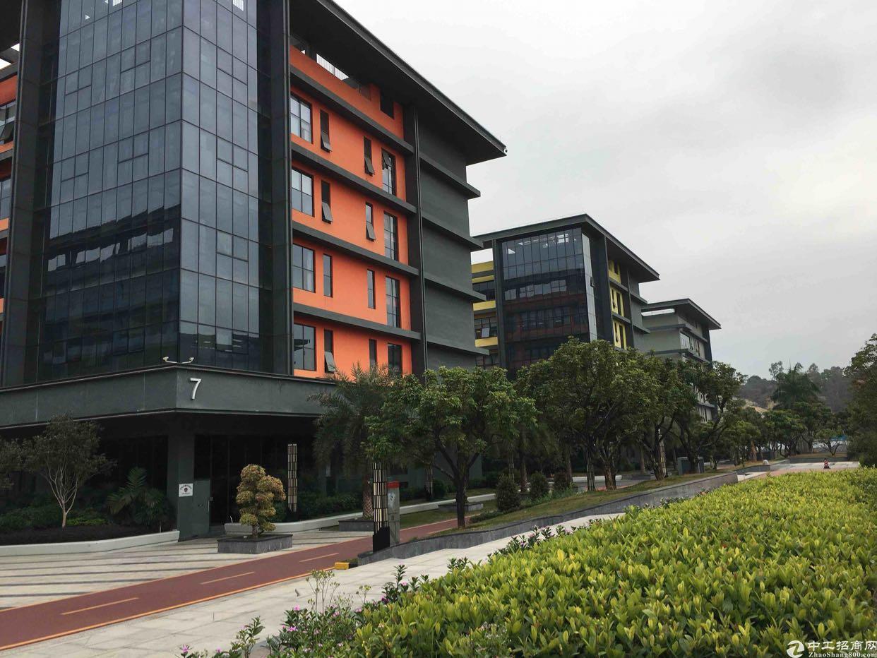 龙华红本厂房1楼2000平,五和大道旁新出科学院-图5