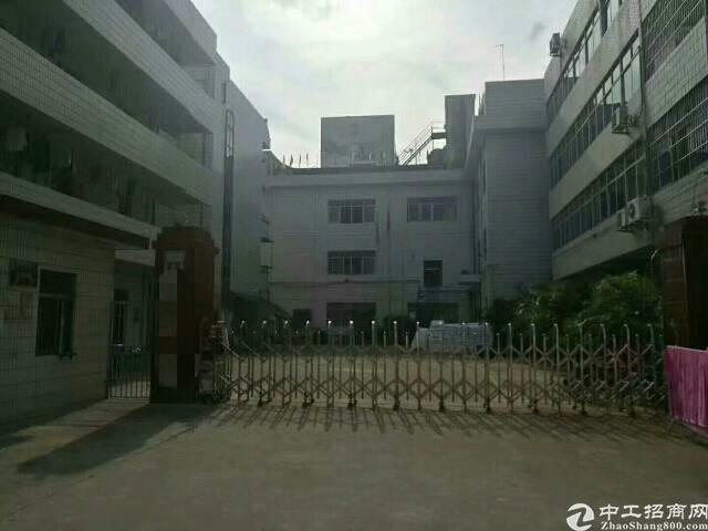 龙岗龙东新出金典小独院  厂房三层2800,办公楼3层500