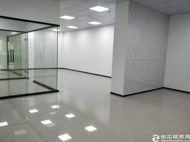 龙华汽车站对面3楼165平方,精装修图片5