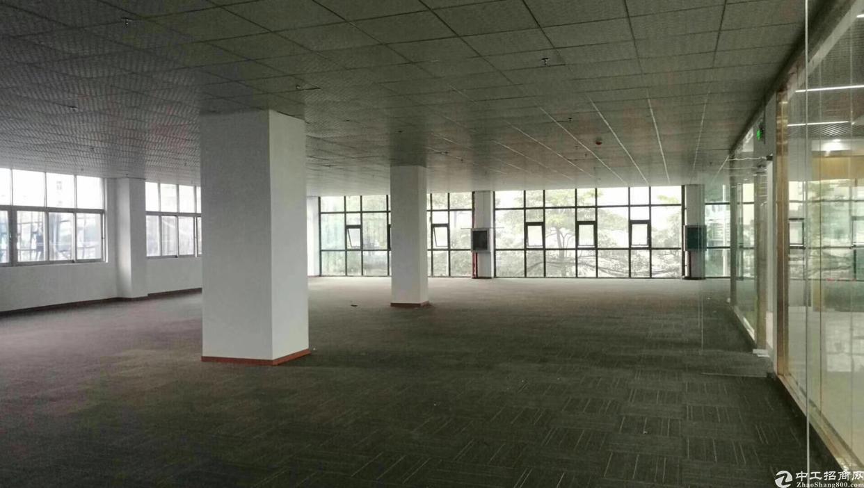 龙华汽车站,交通便利易招人100平起租自由组合