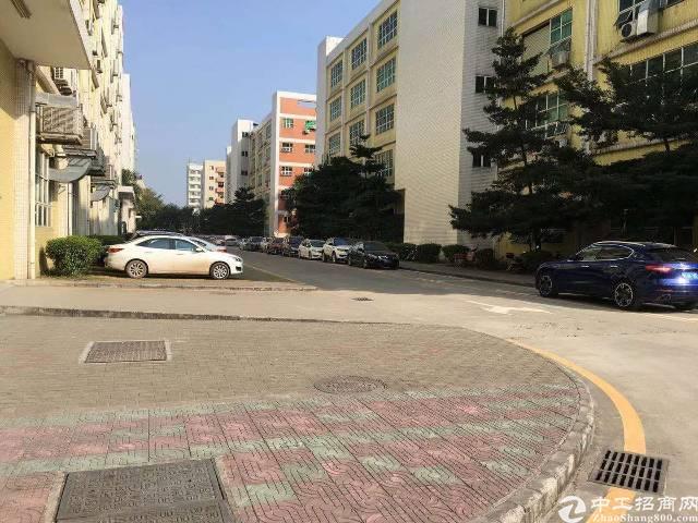 沙井大王山二楼1300平电商仓库出租