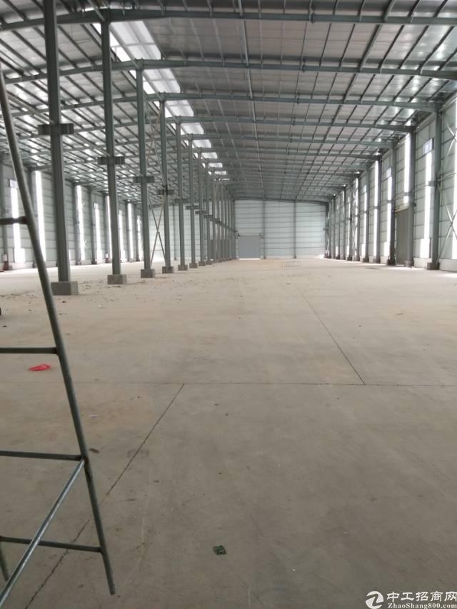 企石镇东部快线旁新建钢构厂房出租,面积5000平方,带牛角