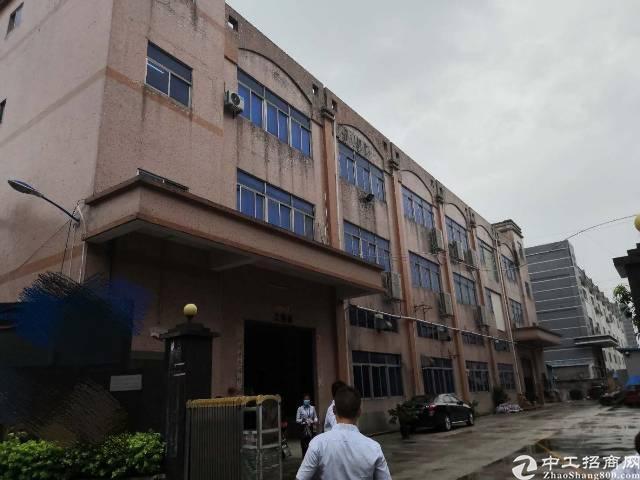 沙井原房东厂房2000平米精装修厂房出租,无转让费