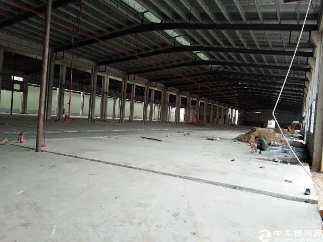 寮步镇新出4000平单一层钢构厂房