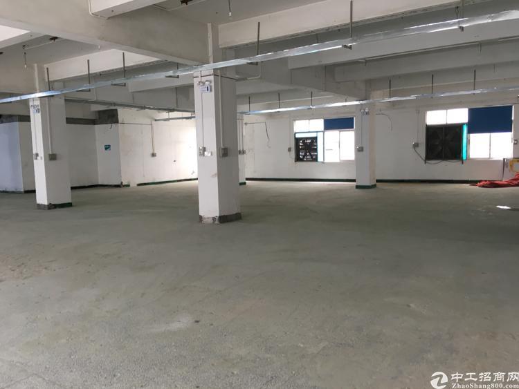 福永白石厦新出原房东独门独院2000平