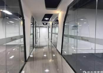 西乡碧海湾双地铁口附近50-350平米精装修出租图片3
