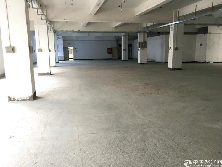 福永白石厦新出原房东独门独院2000平-图2