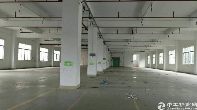 龙华大浪原房东厂房楼上3380平,面积实在