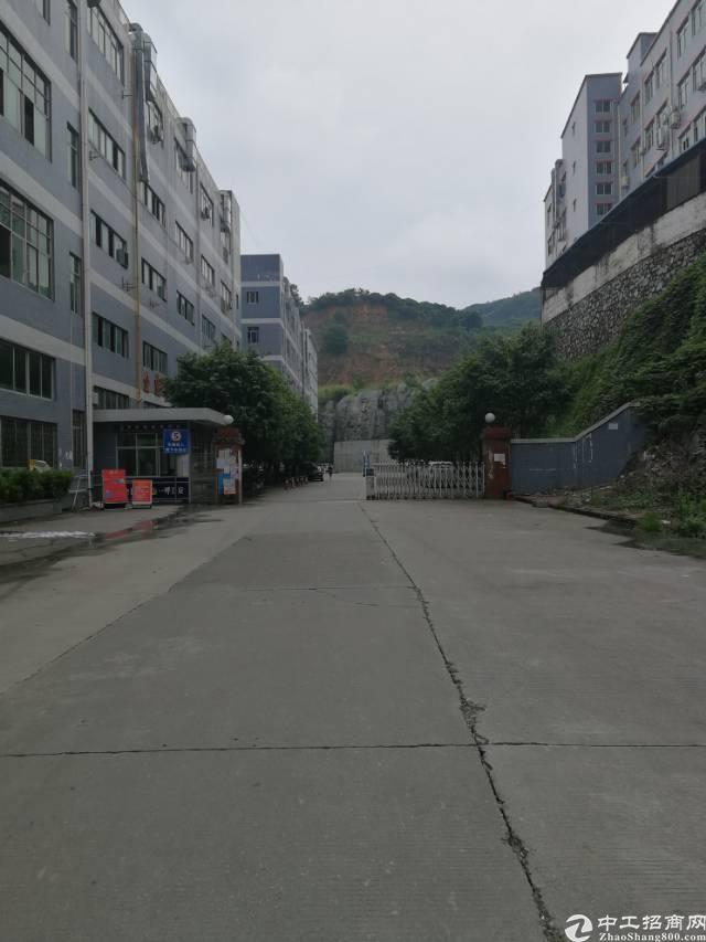 凤岗镇黄洞新出带办公室、地坪漆、消防喷淋标准厂房1750平