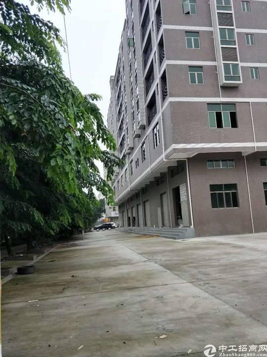 龙华区新建原房东公寓1-8层出租