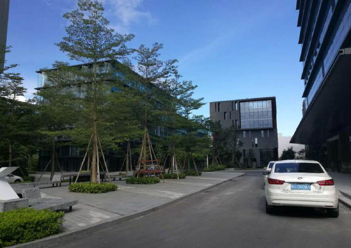 龙岗宝龙新出带装修厂房写字楼,商业红本消防图片3