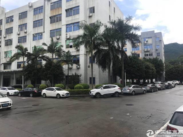 西丽茶光村10000平米厂房招租可分租