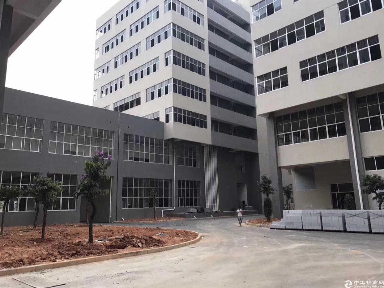 广州花都全新厂房出售10600平:带红本消防喷淋-图2