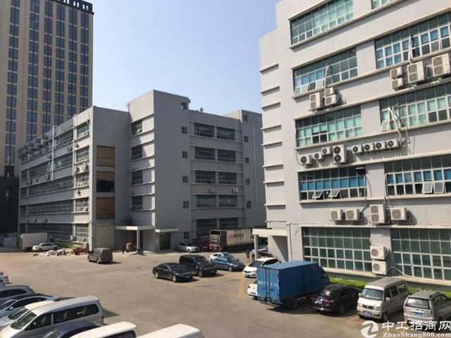 龙华大浪商业中心新出楼上2200平带装修,大小分租