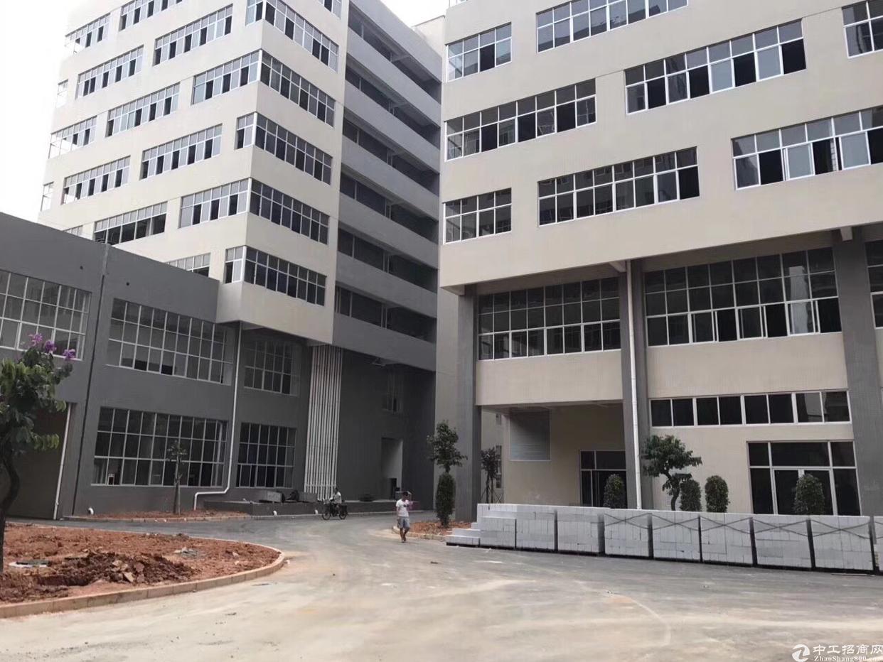 广州花都全新厂房出售10600平:带红本消防喷淋