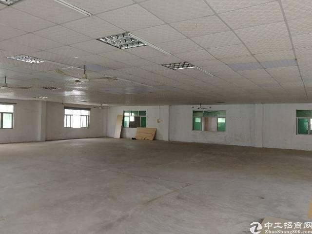 惠州惠阳秋长新出独门独院钢构厂房,行业限制小-图4