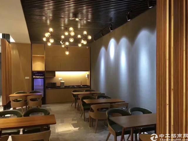 坂田吉华路别墅区新出独栋全新豪华装修219平户型高配置放租