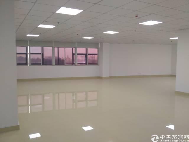福永沿江高速口楼上2-600㎡精装修写字楼出租-图3