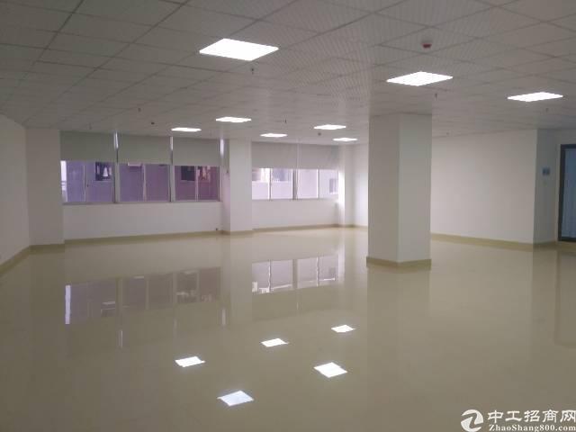 福永沿江高速口整层4000㎡精装修写字楼出租大小可分