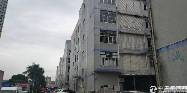 坂田雪象医院附近新出20000平厂房出租!可分租