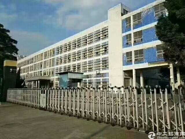 福永塘尾花园式厂房1F4200平