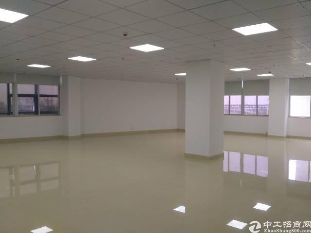 福永沿江高速口楼上2-600㎡精装修写字楼出租-图5