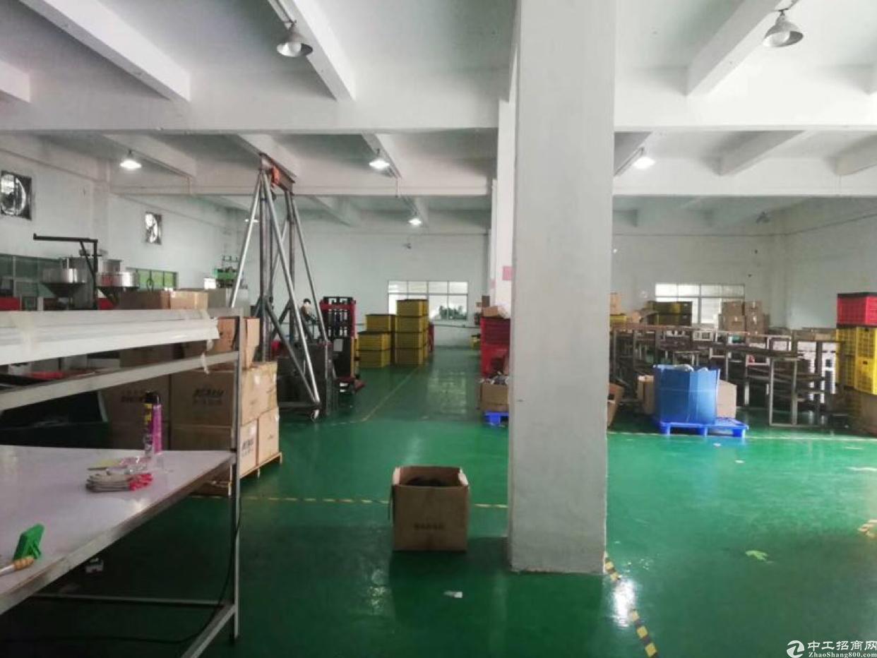 全新标准厂房一楼
