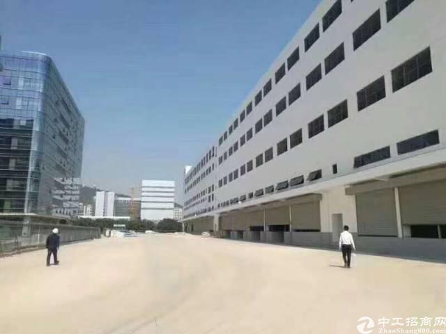 福永白石厦107国道边一楼8000平仓库招租,可分租