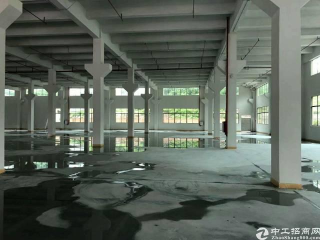 茶山镇新出分租一楼3000平米带牛角