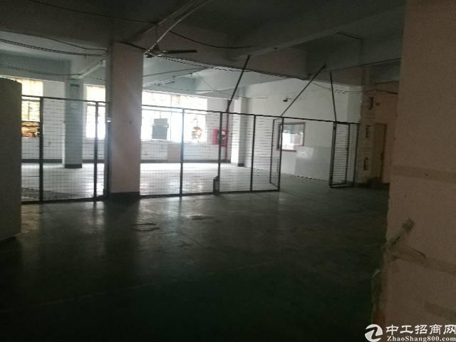 西乡九围村委附近原房东1300平米出租