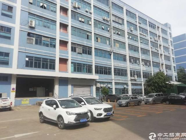 西乡固戍107国道边新出整层3500平厂房出租