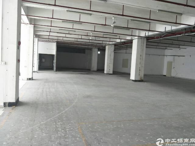 西乡臣田工业区超靓厂房2900平方大小分租租金35元