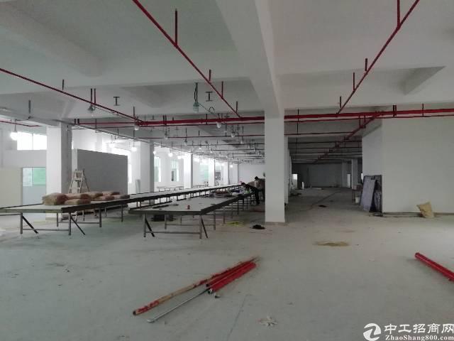 惠州新圩全新厂房出租