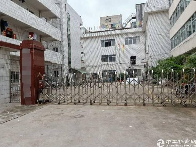 平湖辅城坳业主标准厂房1楼800平出租